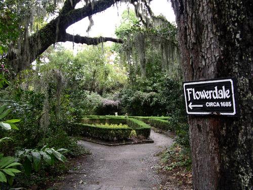 Flowerdale 25 October 2008