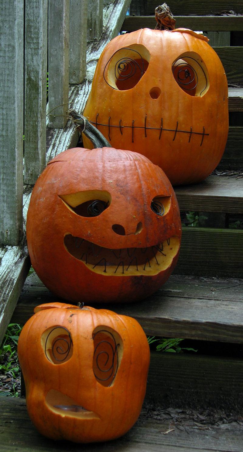 Jeff's Pumpkins I 31 October 2008