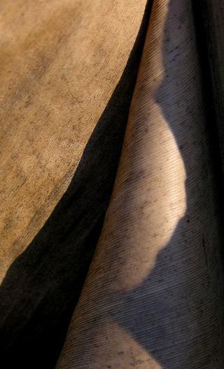 Banana Leaf 29 December 2008