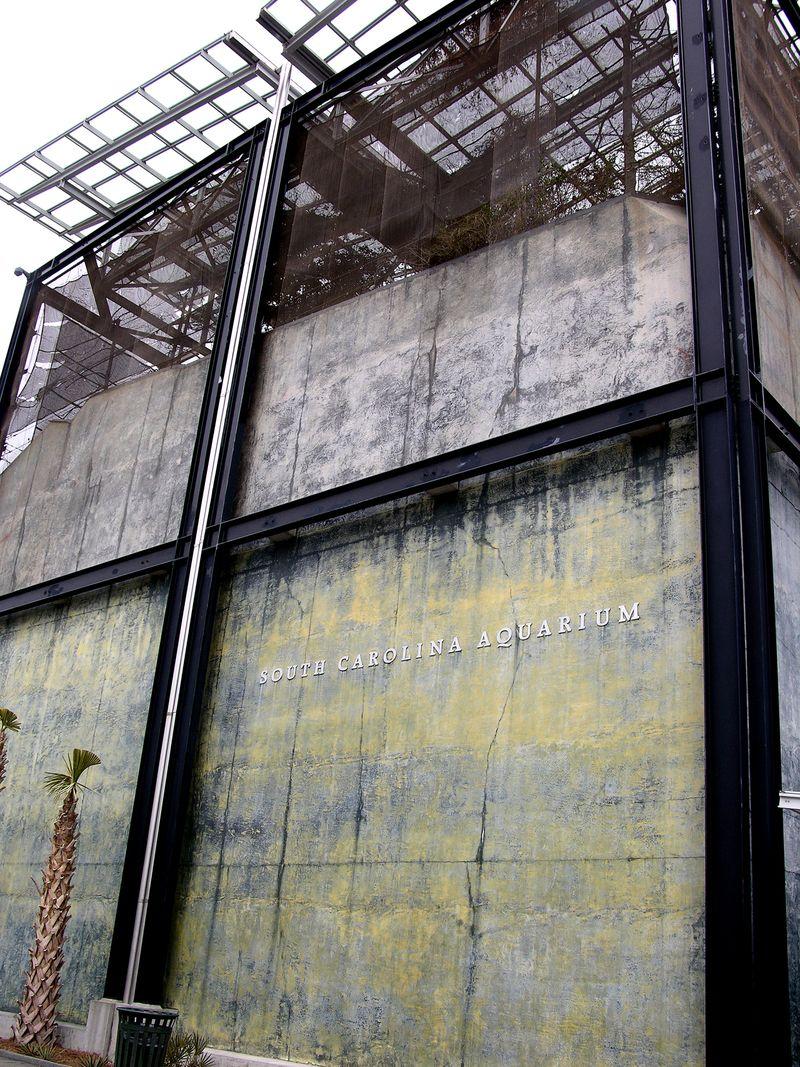 SC Aquarium 27 February 2010