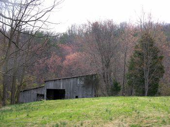 Greene County II 21 March 2010