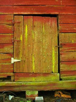 Barn door 29 June 2010