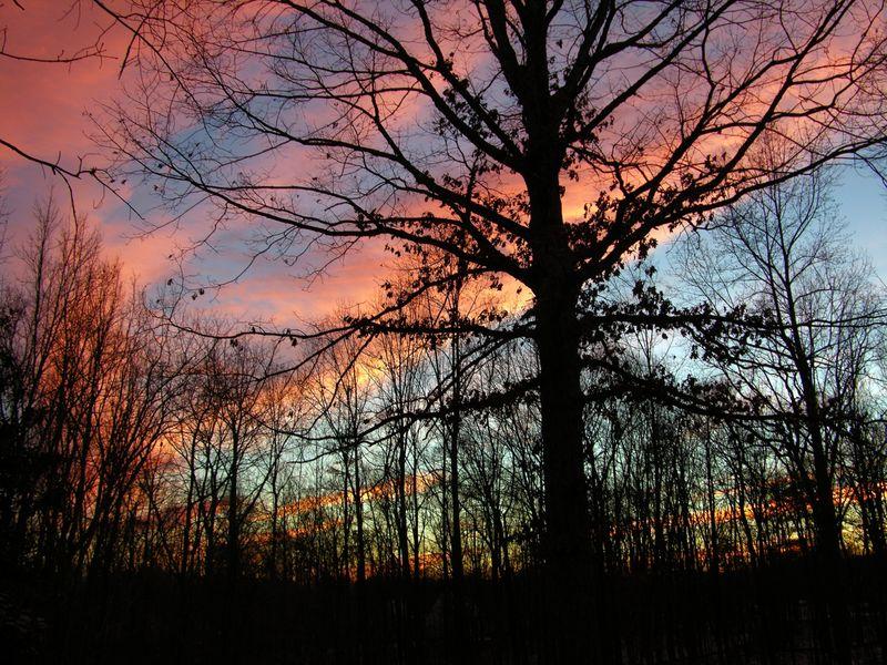 Sunset V 27 December 2010