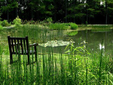 Pond I 19 May 2011
