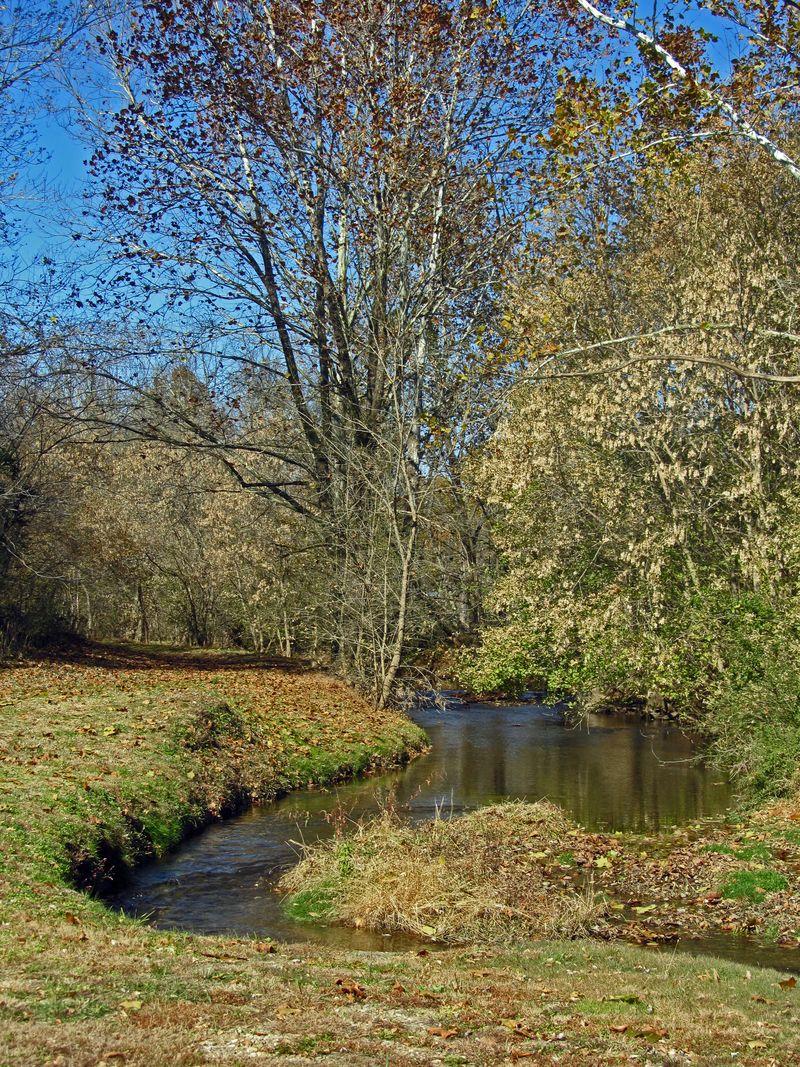 Crooked Run Creek 5 November 2011