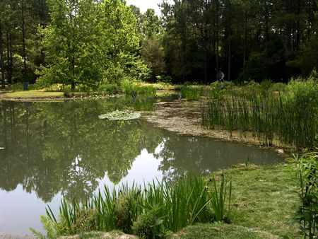 Pond View III 19 May 2011