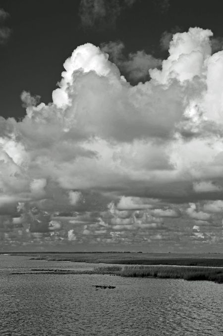Clouds over the Marsh II 15 July 2012