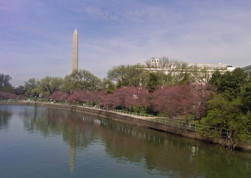 The Tidal Basin II 15 March 2012
