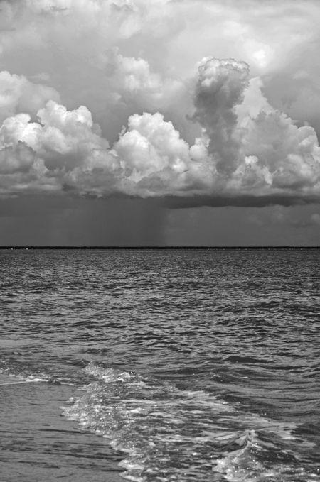 Bulls Island I 15 July 2012