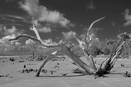 Boneyard II 15 July 2012