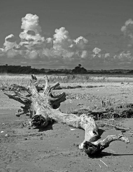 Boneyard III 15 July 2012