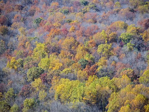 View from Sky Meadows State Park 5 November 2011