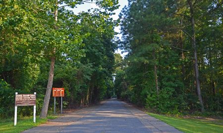 Dismal Swamp Canal Hiking and Biking Trail 14 August 2012