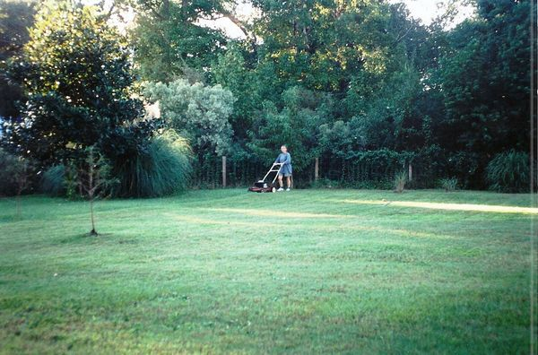 Mowing the Front Yard