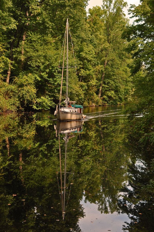 1 Dismal Swamp Canal