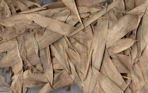 Bamboo_leaf_floor