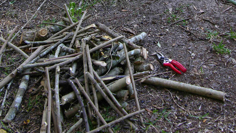Pile_of_wood_12_november_2007
