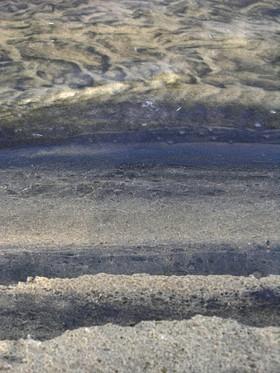 Edge_of_tidal_pool_18_november_2007
