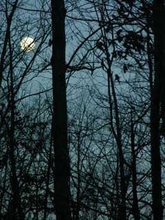Christmas_2007_morning_moon