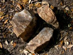 Virginia_rocks_23_march_2008