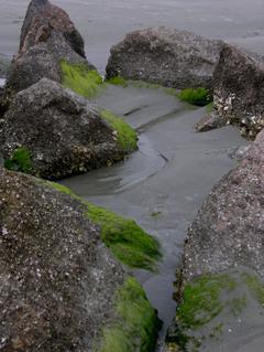 Rocks_on_sullivans_30_march_2008
