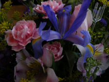Flowers_arrangement_i_16_april_2008