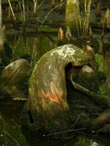 Beidler_forest_iii