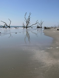 Boneyard_beach_i_1_october_2006_1