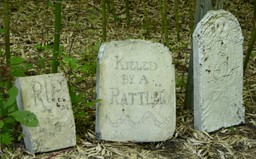 Tombstones_i_24_september_2006_1